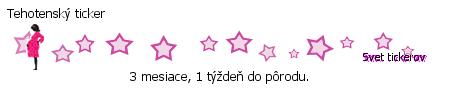 vzor1